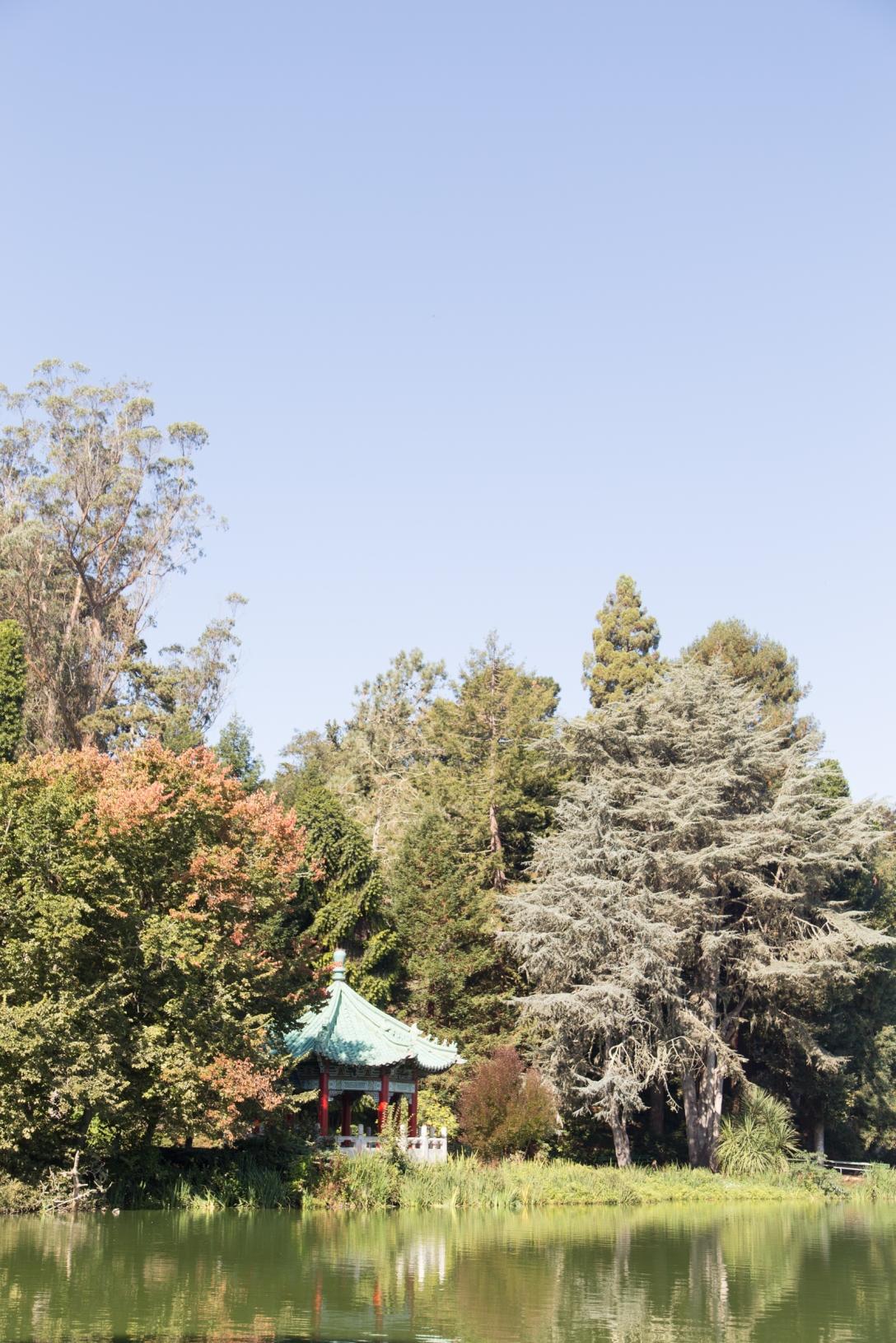 sf golden gate park-9